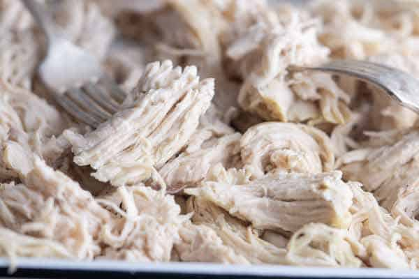 Shredded chicken breast with two forks