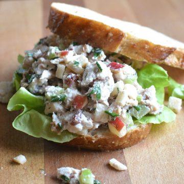 Turkey or Chicken Waldorf Salad - crunchy, sweet, and savory. Apples, walnuts, celery, cranberries, in a creamy, lowfat dressing. Gluten-free, any season recipe. thekitchengirl.com