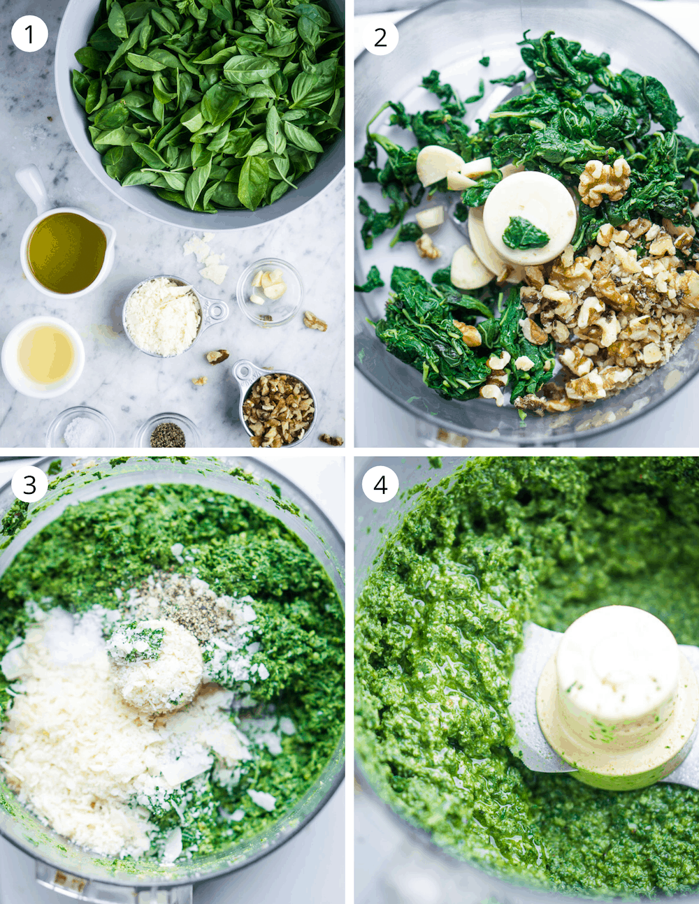 Step by step process of making basil pesto in a food processor